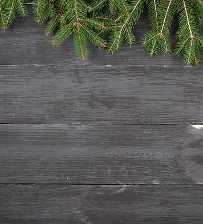 Green branches of a Christmas tree on a black wooden background, copy space