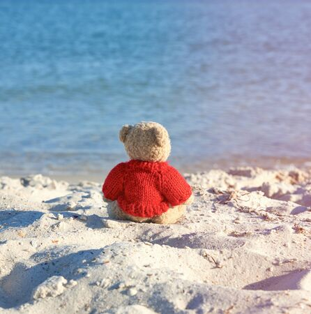 brown teddy bear in a red sweater sitting on the sandy seashore and looks into the distance,  concept of loneliness