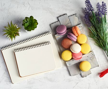 baked round multi-colored macaroons on a wooden board, stack of spiral notebooks, next to green plants in white ceramic pots, top view, workplace