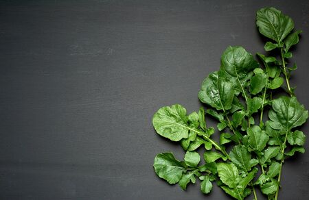 fresh green leaves of arugula on a black wooden background, copy space