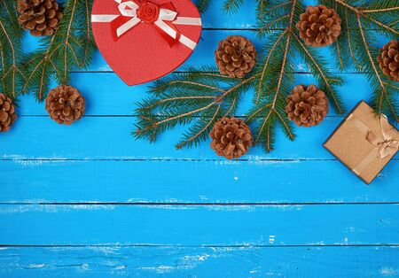 green spruce branches with brown cones and gift box on a blue wooden background from boards, festive Christmas backdrop, copy space