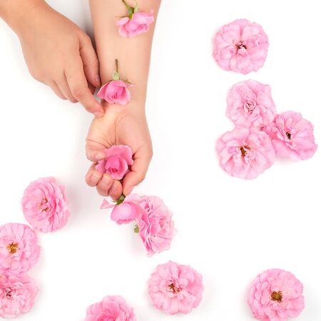 two hands of a young girl with smooth skin and pink rose on a white background, top view,  fashionable concept for hand skin care, anti-aging care, spa treatments