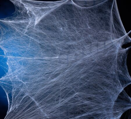 stretched white web with blue backlight, background for the holiday Halloween, copy space