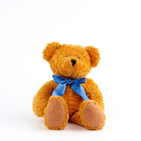 cute brown teddy bear with a blue bow on his neck isolated on white background