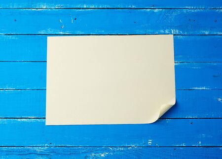 blank white sheet of paper with a curled corner on a blue wooden background Standard-Bild