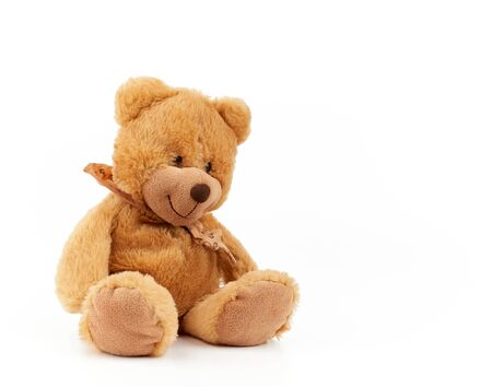 cute light brown fluffy teddy bear with a tie on his neck sitting on a white isolated background, toy for children, copy space Banco de Imagens