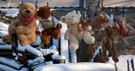cute brown wet teddy bears hanging on a clothesline and drying in the fresh air,outdoor Stok Fotoğraf