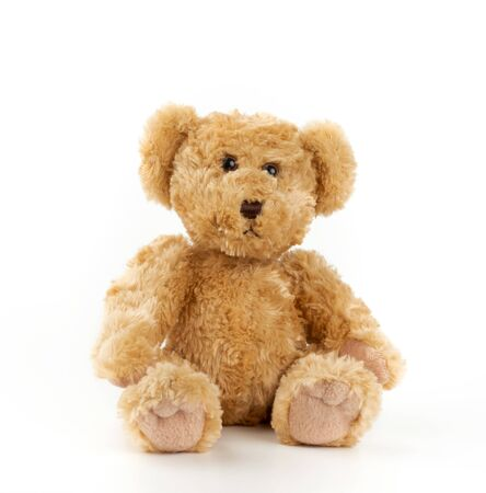 cute light brown fluffy teddy bear sitting on a white isolated background, toy for children