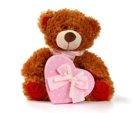 brown curly teddy bear sits and holds a pink cardboard box with a gift, toy isolated on white background