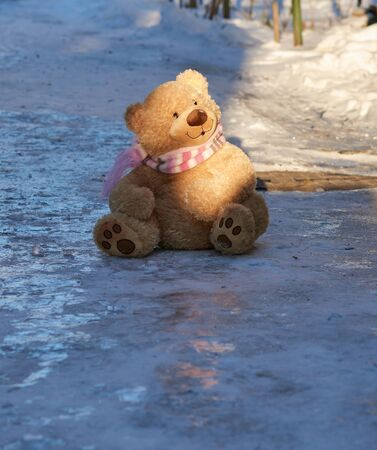 big cute curly teddy bear in a scarf sitting on white snow, loneliness concept Standard-Bild