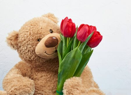 cute brown teddy bear holds in his paw a bouquet of red tulips, festive backdrop for birthday, Valentine's Day, anniversary. Romantic greeting card.