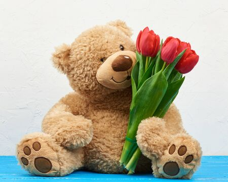 cute brown teddy bear with patches sits on a blue wooden background and holds in his paw a bouquet of red tulips, festive backdrop for birthday, Valentine's day, anniversary