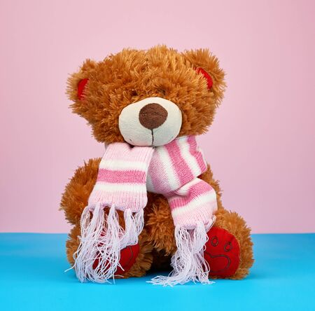 cute brown teddy bear in a colored knitted scarf sitting on a blue-pink background, close up