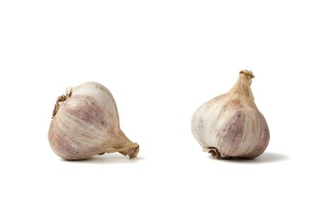 white fresh garlic head isolated on a white background, healthy spice, set