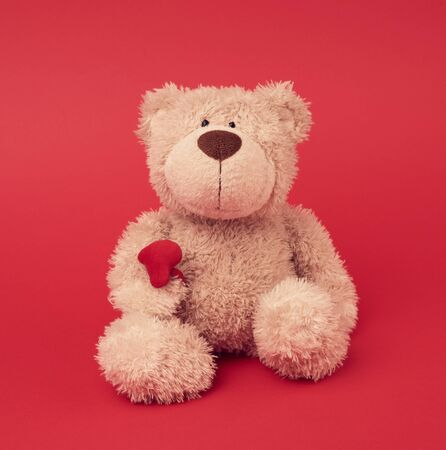 little brown teddy bear, toy is sitting on a red background, close up