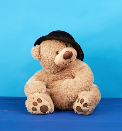 big brown teddy bear in a black hat on a blue background