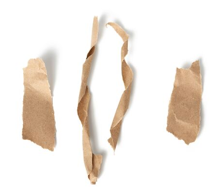 twisted brown paper strips and torn pieces isolated on white background, top view