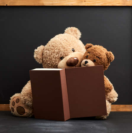 two brown teddy bears are sitting with a book on a black background, concept of family togetherness and leisure
