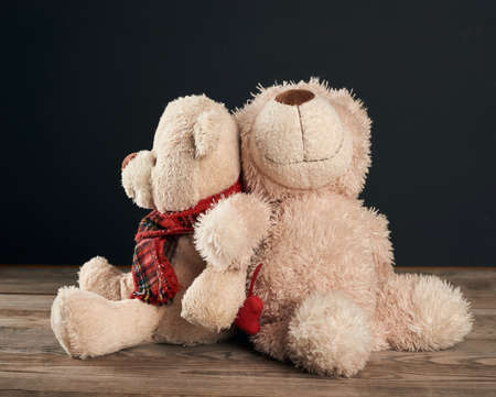 two brown teddy bears are sitting on a brown wooden table, black background, family concept