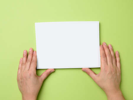 two female hands holding an empty white frame on a green background