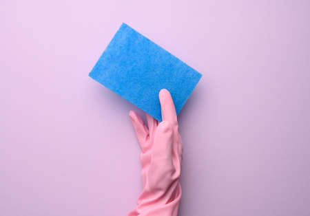 female hand in pink rubber glove holds blue kitchen sponge on purple background, close up