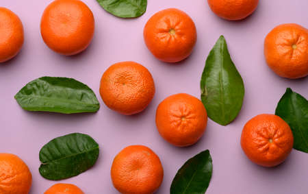ripe tangerines and green leaves on a purple background, top view