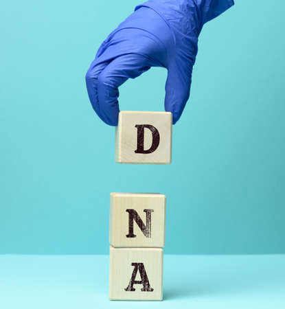 abbreviation DNA on wooden square blocks, blue background 免版税图像