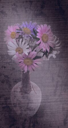aster: Beautiful bouquet of asters in vase. Grunge styled.