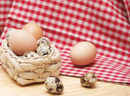 gallina con huevos: Codorniz y gallina huevos en la cocina con una toalla