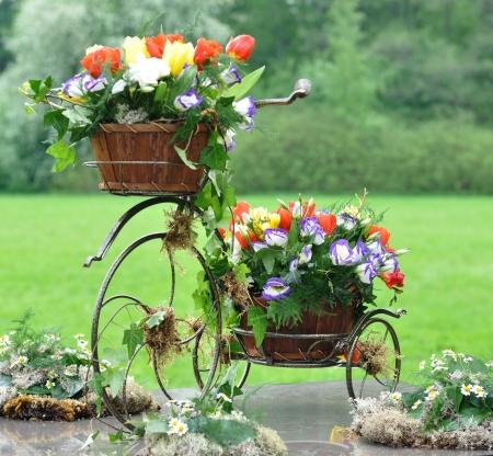 Vintage Garden Bicycle Photo