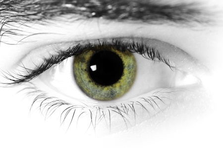 green eyes: Close up of a mans eyes