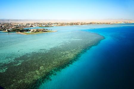 Golf von Sues El Gouna - bird