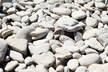 white pebbles on a beach Stock Photo - 13941727