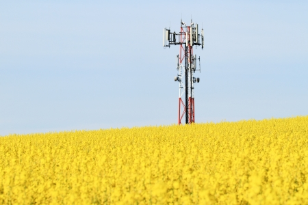 electric cell: Gsm transmitter on a blooming field Stock Photo