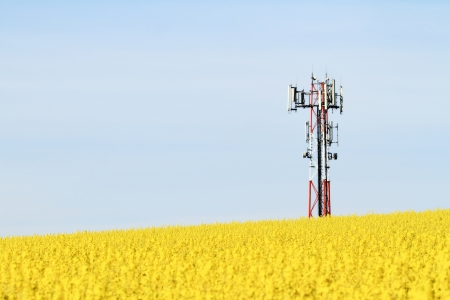 Gsm transmitter on a blooming field Stock Photo