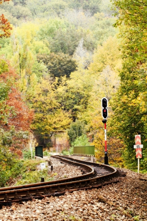 forest railroad: Railroad track winding through forest Stock Photo