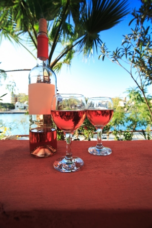 Two wineglasses on the Beach photo