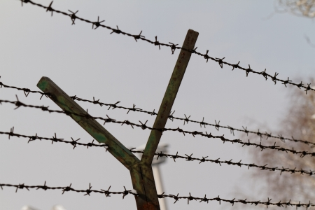 Barbed wire on gray background Stock Photo - 21185569