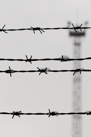 Barbed wire on gray background photo