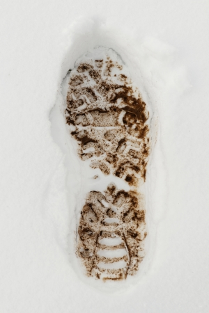 Muddy Footprint in the fresh white snow photo