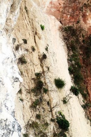 solidify: Limestone rock face - close up