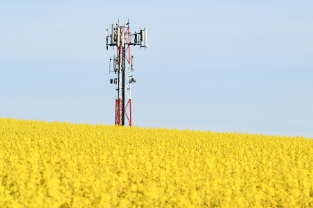 gsm: Gsm transmitter on a blooming field Stock Photo