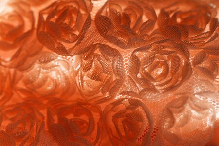desing: Peach-colored roses material - macro photo Stock Photo