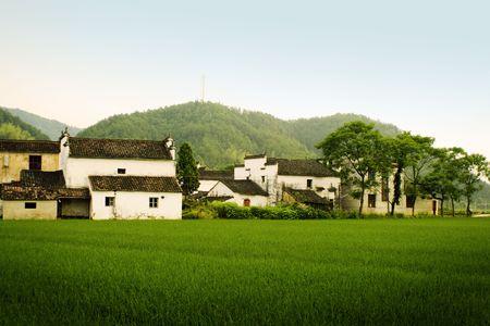 farmland in south china photo