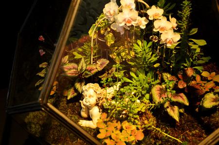 glasshouse: Cupids Glasshouse Stock Photo