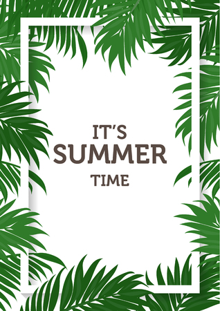 summer background, coconut and palm leaves and nature concept.  can be use for greeting card, wedding invitation card, can be add text.  vector illustration