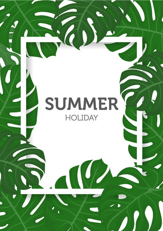 background summer: summer background, palm leaves and nature concept.