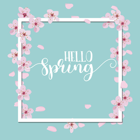 flower fields: Spring season background, pink cherry blossom on blue blackground. Illustration