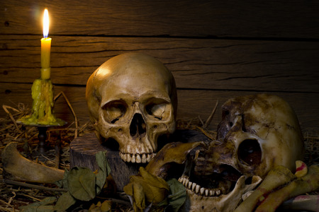 leaf cutter: Skull and light candle with dry roses - Still life style