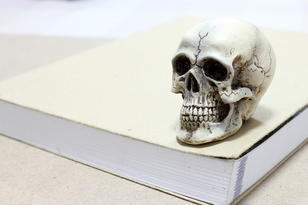 cadaver: Still Life with a Skull and book on wooden table Stock Photo